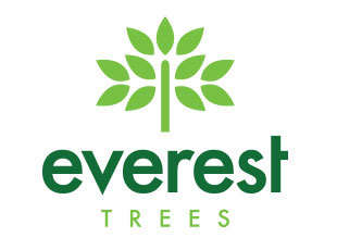 Everest Trees (Hepworth)