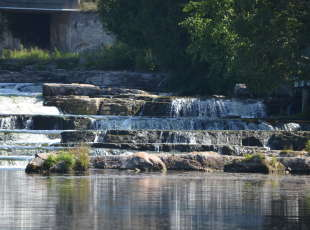 Tour up the River to Sauble Falls